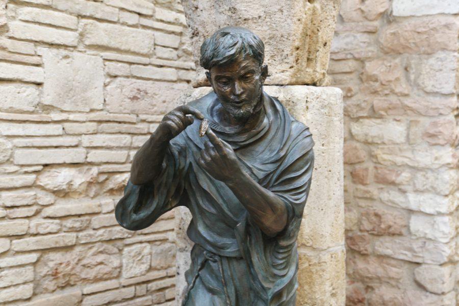 Assisi, Santa Maria degli Angeli, La Cicala
